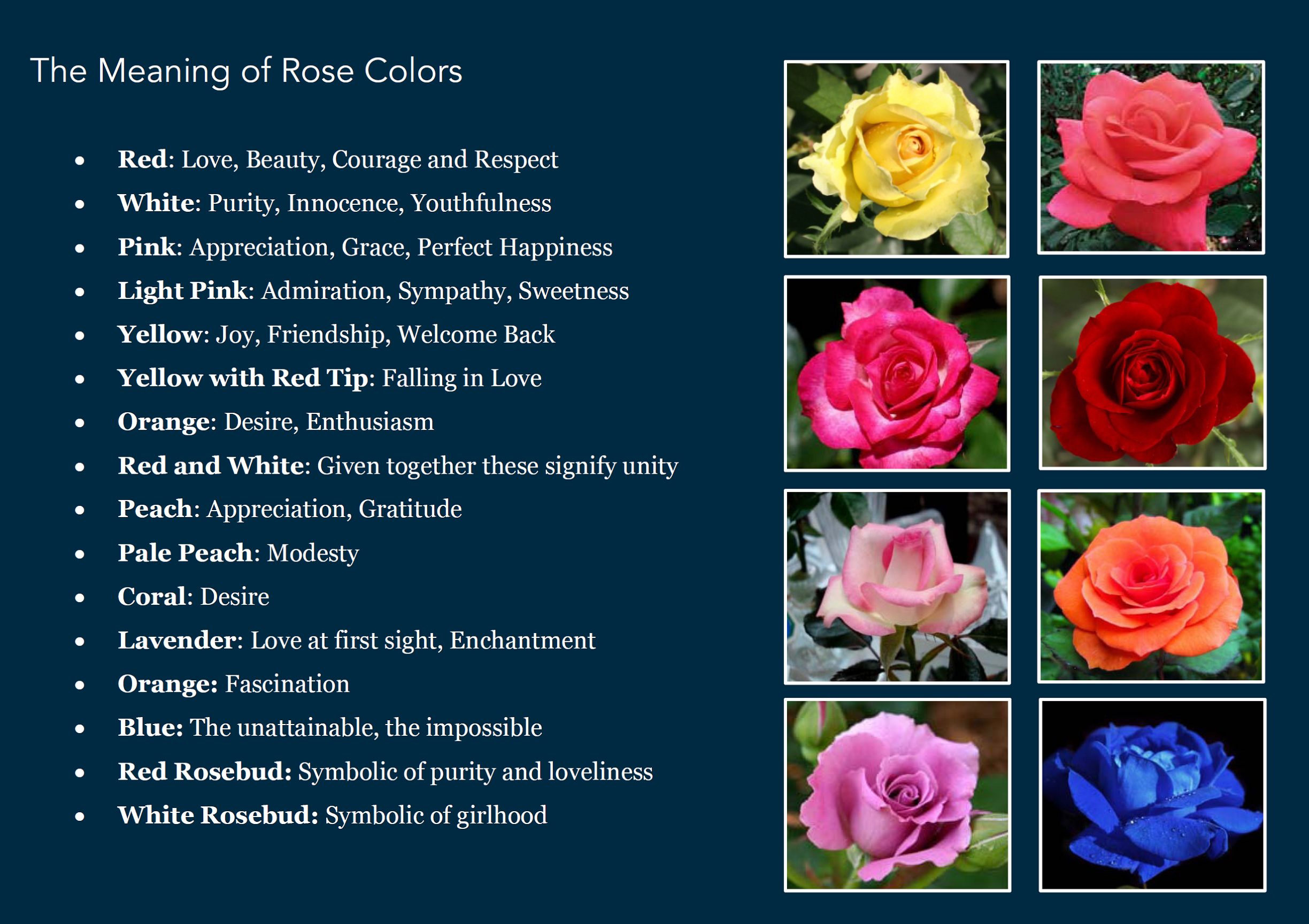 What does roses symbolize images symbol and sign ideas rosario taking care of our rose garden city part 22 for rose color meaning woodenroses buycottarizona buycottarizona